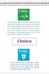 Cholera Elimination in West and Central Africa: Contributing to the Sustainable Development Goals